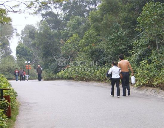 在莲花山公园的登山道上,一男子光着膀子在一女子