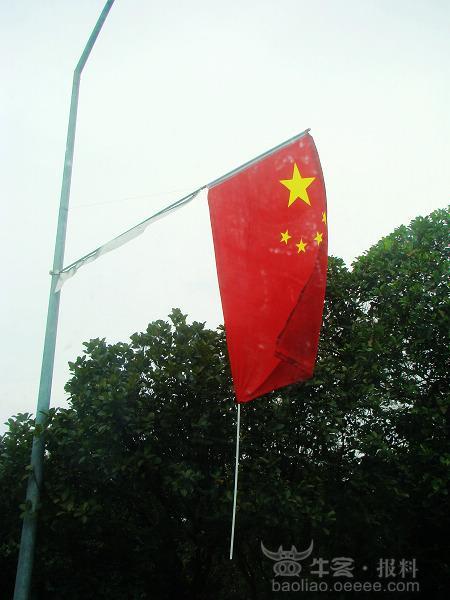 国旗下的小孩子q版图片