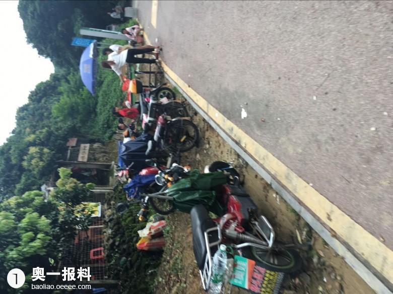 凤凰山公园荔枝园里乱开农家乐 现杀活鸡鸭_报