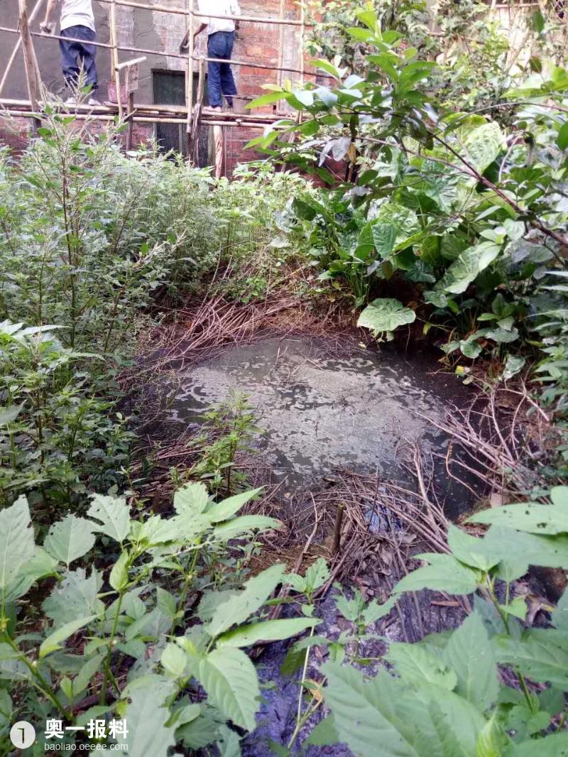 养猪场严重污染环境,投诉近两年无相关政府部