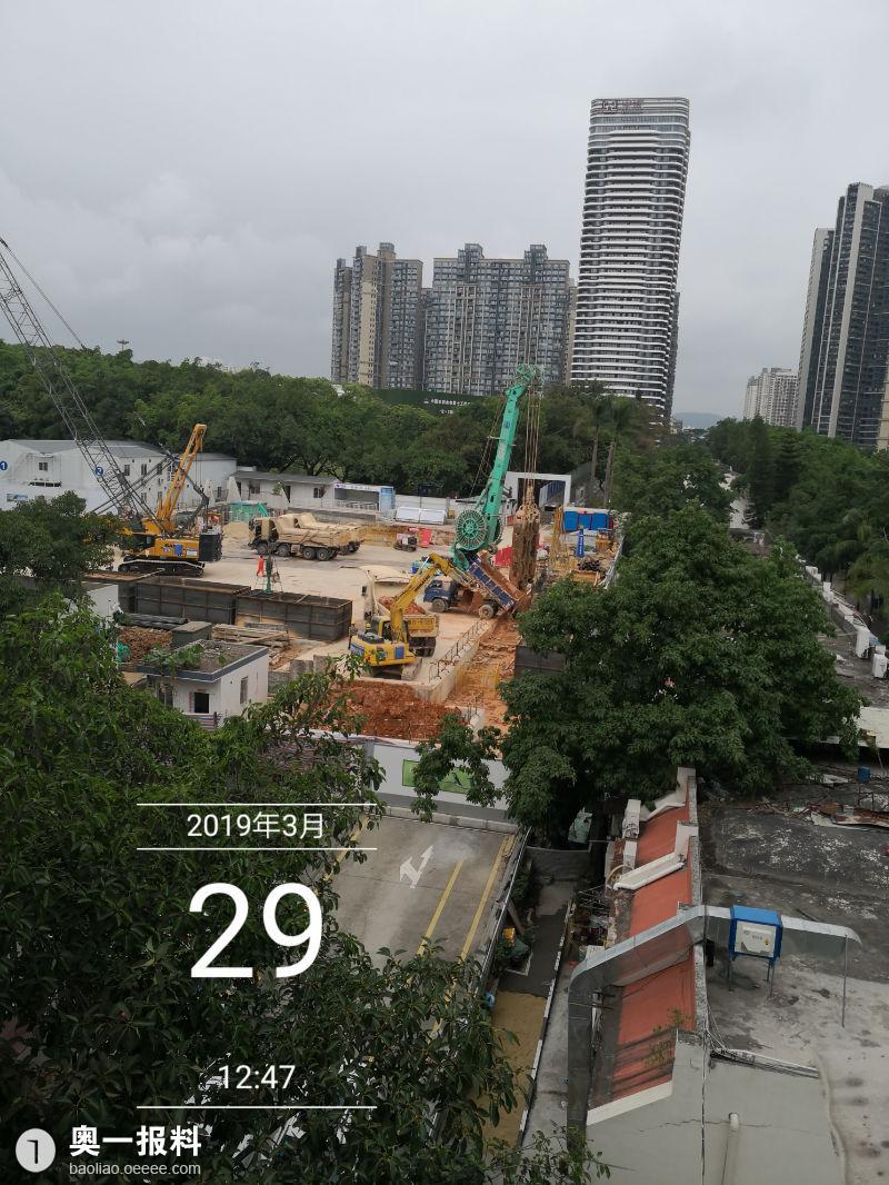 深圳红树林公园图片